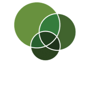 Eden Trees - Logan Tree Removal